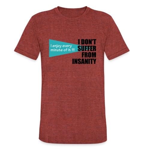 I Don't Suffer From Insanity, I enjoy every minute - Unisex Tri-Blend T-Shirt