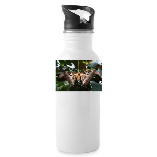 Atlas - Water Bottle