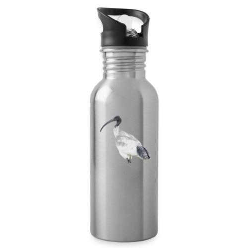 IBIS - Water Bottle