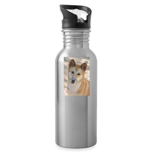My youtube page - Water Bottle