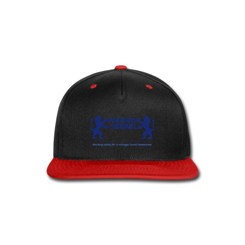 Defenders Of Israel - Snap-back Baseball Cap