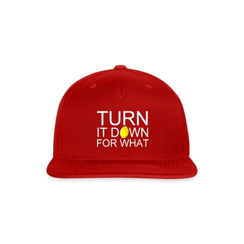 Turn it Down For What Design - Snap-back Baseball Cap