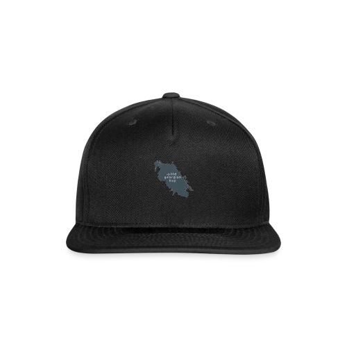 Wild Georgian Bay - Snapback Baseball Cap