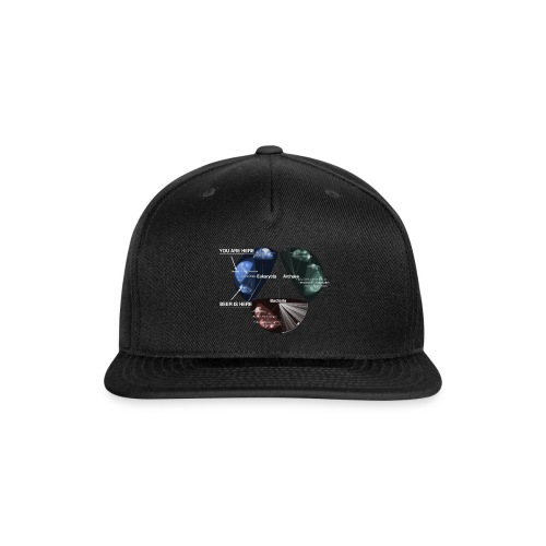 Beer is here: Tree of Life - Snap-back Baseball Cap