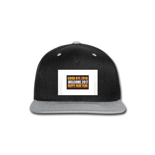 2017 - Snap-back Baseball Cap