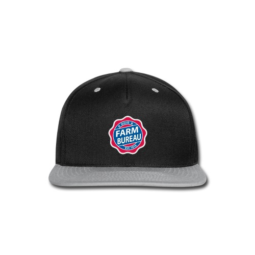 Color Logo - Snap-back Baseball Cap