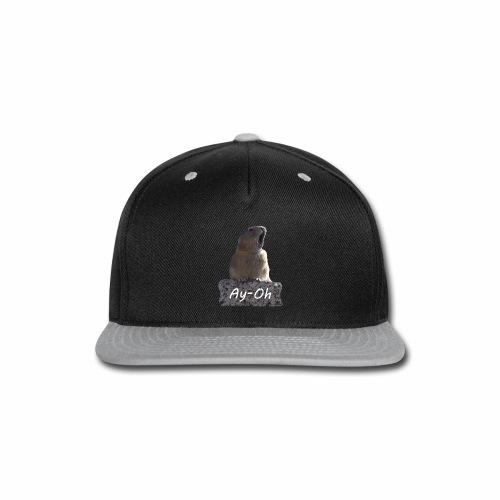 Ay-Oh - Queen (Live Aid) - Snap-back Baseball Cap
