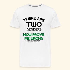 There Are TWO Genders - Men's Premium T-Shirt