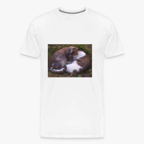 Cat nap - Men's Premium T-Shirt
