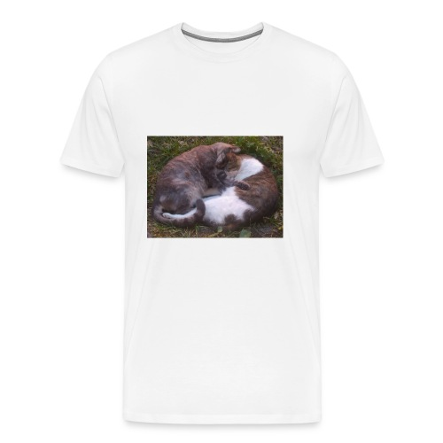 Cat nap - Men's Premium T-Shirt