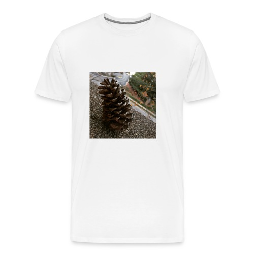 Pine Cone on Ledge - Men's Premium T-Shirt