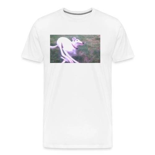 spread - Men's Premium T-Shirt