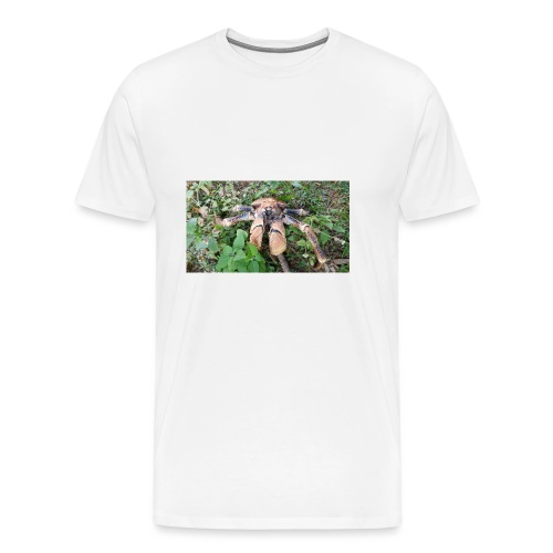 Robber Crab - Men's Premium T-Shirt
