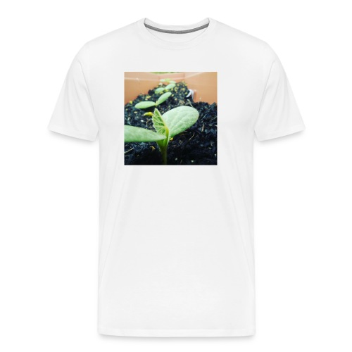 Small Plants - Men's Premium T-Shirt