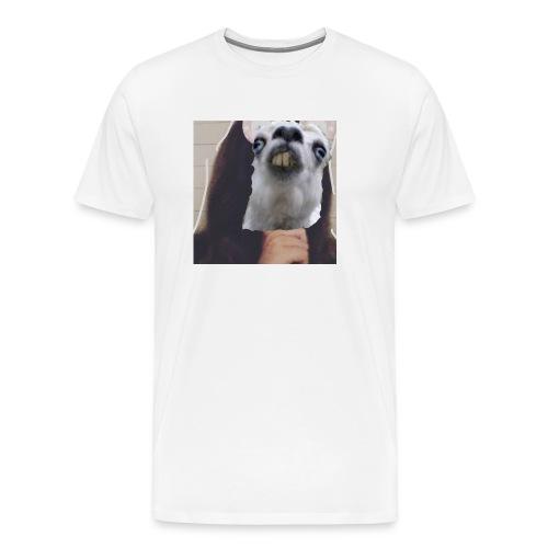 IMG 20180116 212329 638 - Men's Premium T-Shirt