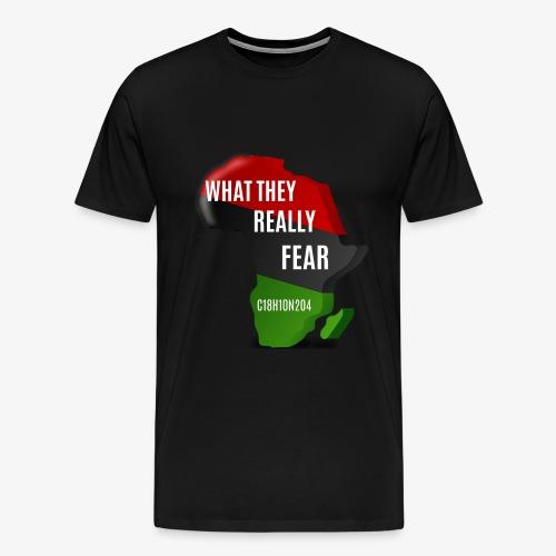 Melanin Formula - Men's Premium T-Shirt