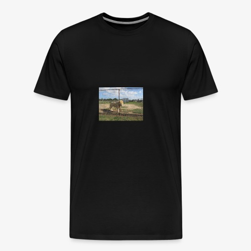 IMG 7902 - Men's Premium T-Shirt