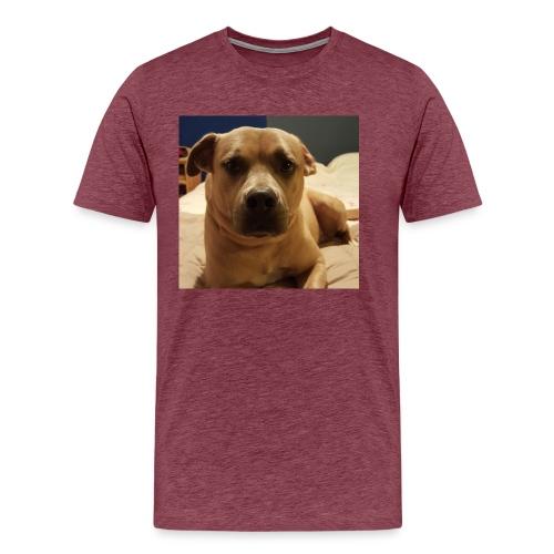 Linus1 - Men's Premium T-Shirt
