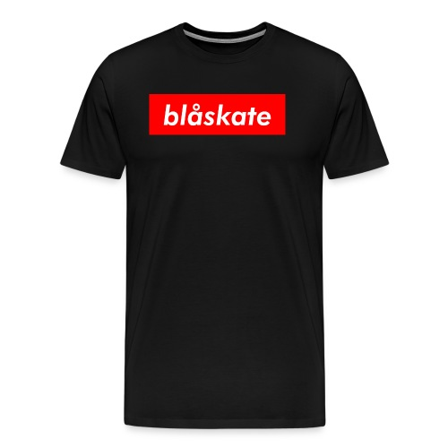 blåskate Box Logo - Men's Premium T-Shirt