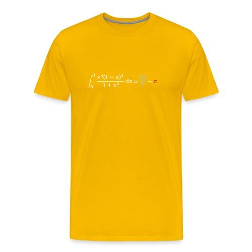 pi integral - Men's Premium T-Shirt