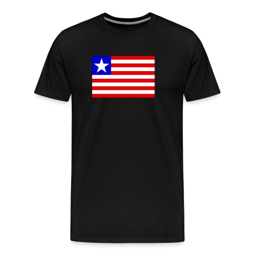 lr gif - Men's Premium T-Shirt