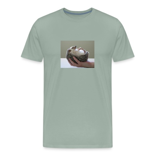 herisson main - Men's Premium T-Shirt