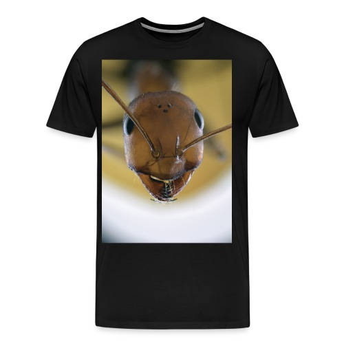 14440616399 9a71bee9b6 o jpg - Men's Premium T-Shirt