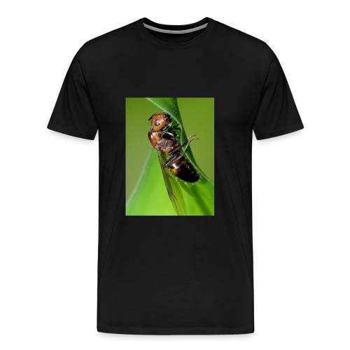 4038042277 3aeac8fd7a o jpg - Men's Premium T-Shirt