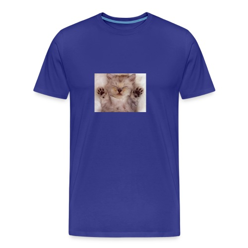 Cute Kitten kittens 12928538 800 600 - Men's Premium T-Shirt