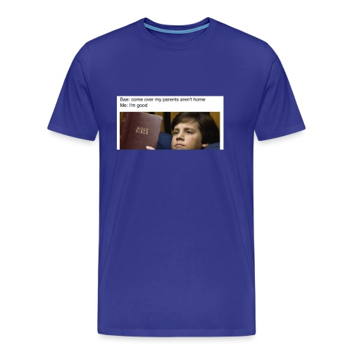 5b97e26e4ac2d049b9e8a81dd5f33651 - Men's Premium T-Shirt