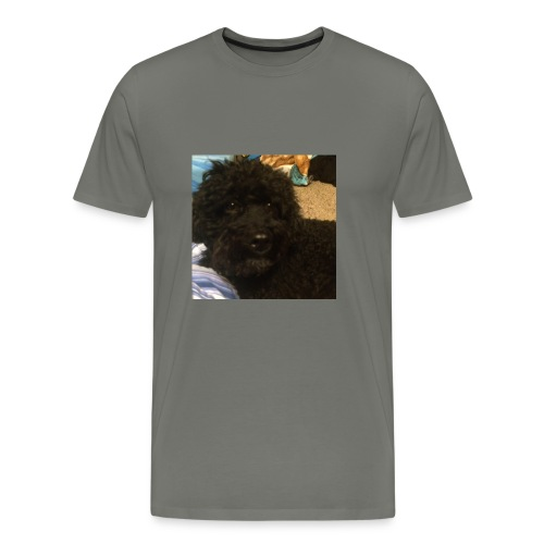 E57DEC48 A91D 491D B00E C9323D829AC3 - Men's Premium T-Shirt
