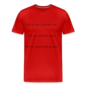 Curly Hair Dont Touch - Men's Premium T-Shirt