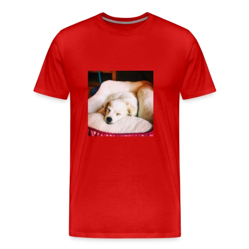 Sleeping Puppy Luma - Men's Premium T-Shirt