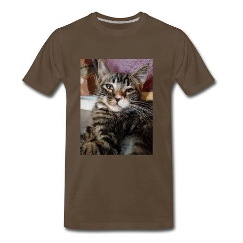Eli the fat brown tabby - Men's Premium T-Shirt