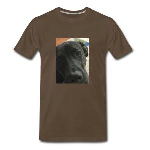 Lab - Men's Premium T-Shirt