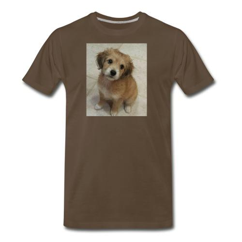 Turtle turtle - Men's Premium T-Shirt
