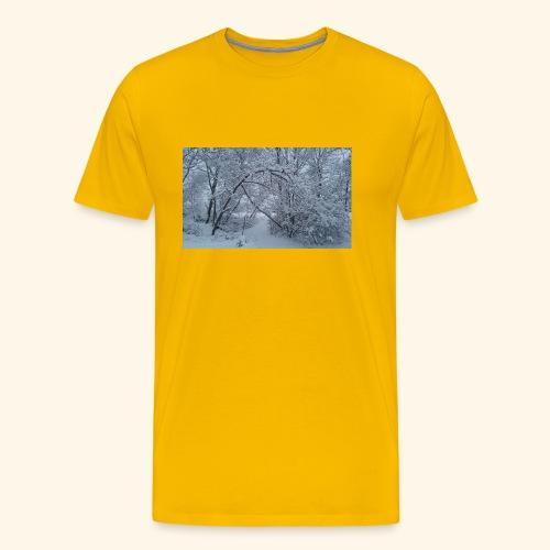 20170310 072946 - Men's Premium T-Shirt
