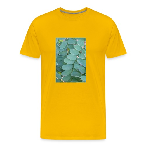20170223 152134 - Men's Premium T-Shirt