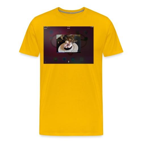Donuts cat - Men's Premium T-Shirt