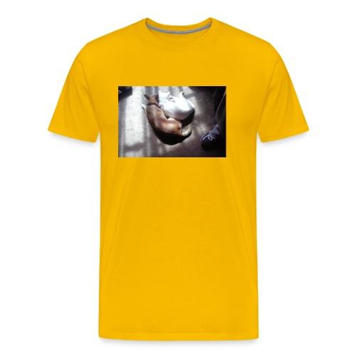 Best friends - Men's Premium T-Shirt