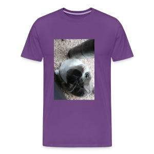 Adorable kitty staring positive messages - Men's Premium T-Shirt
