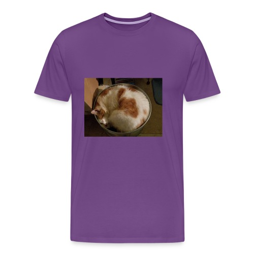 Cat sleeping t shirt - Men's Premium T-Shirt