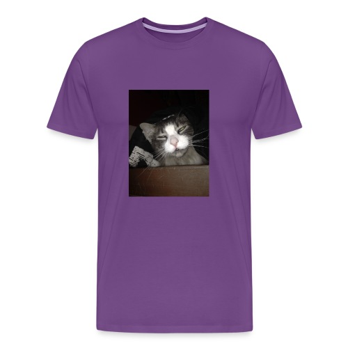 My Cat Melvin - Men's Premium T-Shirt