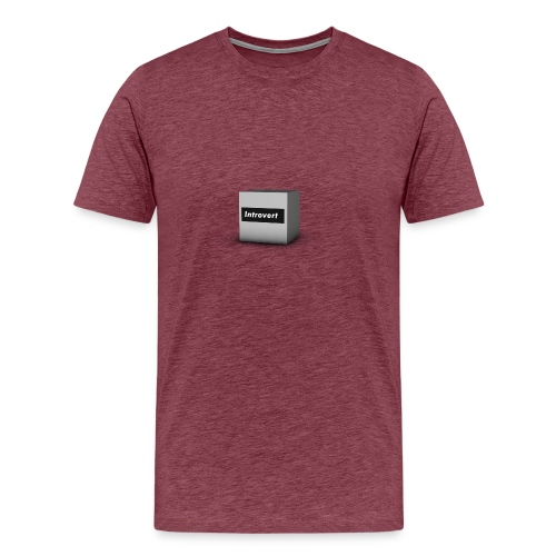 Box Logo - Men's Premium T-Shirt
