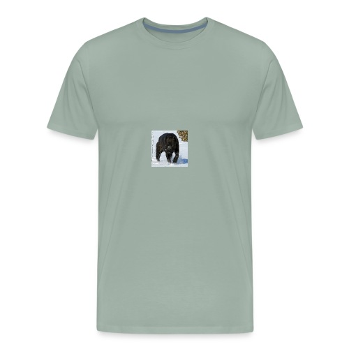 received 223341231819445 - Men's Premium T-Shirt