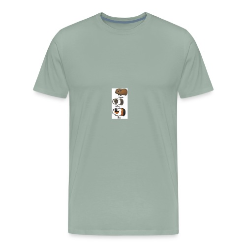 all animated guinea pigs - Men's Premium T-Shirt