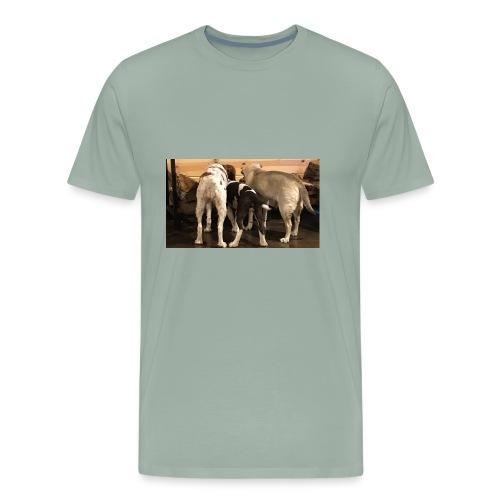 Curious Bird Dogs - Men's Premium T-Shirt