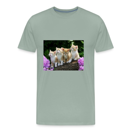 hd free pics of cats and kittens - Men's Premium T-Shirt