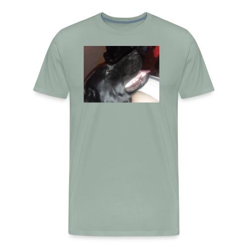 20180219 204526 - Men's Premium T-Shirt