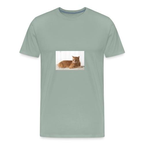 shutterstock 1076294222 760x506 - Men's Premium T-Shirt